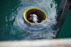 Colector de desechos de mar en funcionamiento en un puerto deportivo