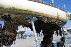 El antifouling es un gran desafío para la navegación sostenible y ecológica